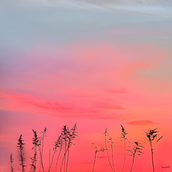 The best colors happen after the sunset; this scene was spectacular in hues of pinks and subtle blues above.